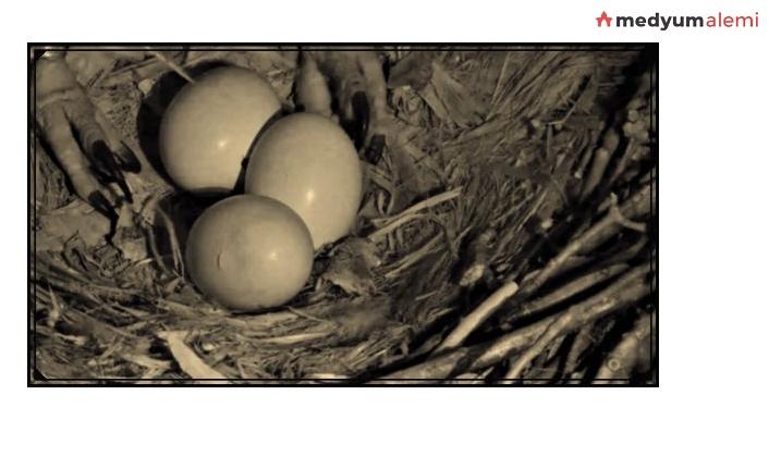 Yumurta Büyüsünün Etkileri Nelerdir?